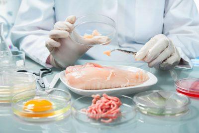 voedselveiligheid cursus